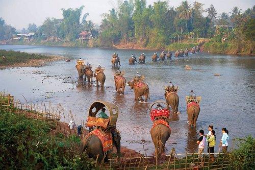 The Elephant Caravan Laos 2015