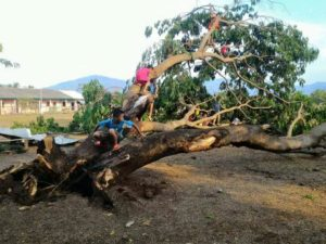 Storms batter All Parts Of Laos